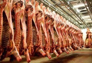 МЯСНОЕ ДЕЛО 2.0. За получение взяток задержаны директора крупнейших государственных мясоперерабатывающих предприятий